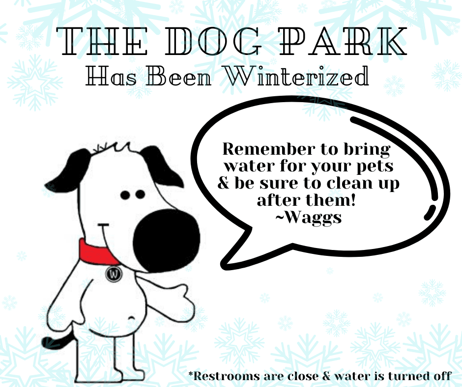 We have Winterized the Dog Park (2)