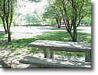 Ator Park Picnic Table
